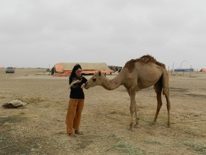 Talks of the Camel (part3)