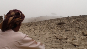 Waiting for the Khareef (part1)