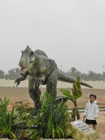 Entertainment Park, Salalah-Dhofar, Oman