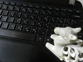 Choosing NET Neutrality