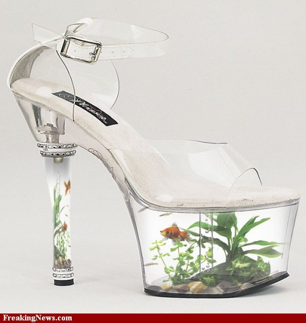 Like this fish shoes, walking with your private copy of an aquarium beneath your feet......